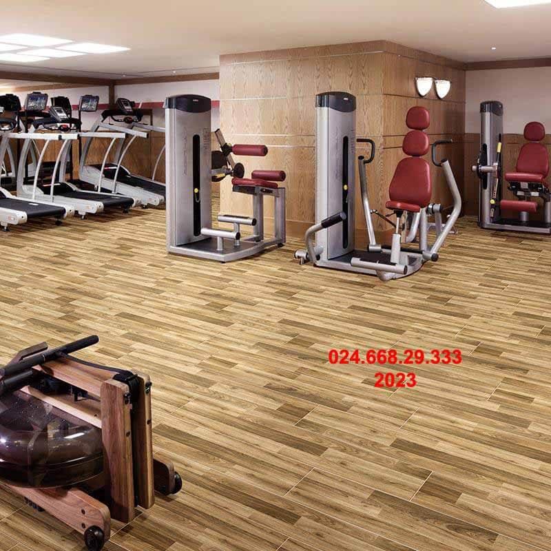 gạch giả gỗ cao cấp 20x100 mã 2023 thiết kế lát phòng tập thể hình phòng trưng bày sản phẩm