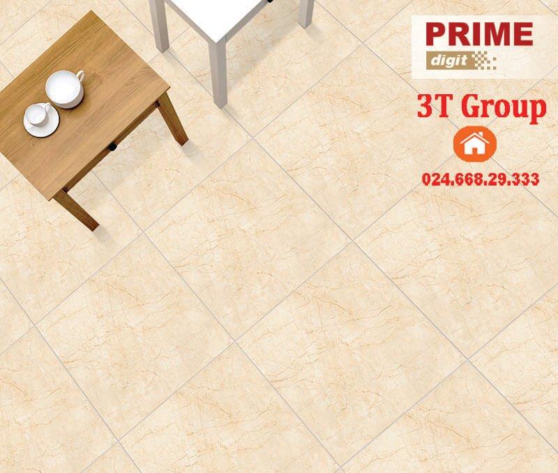 gạch 60x60 prime 9856 vân đá màu vàng lông gà non phối cảnh