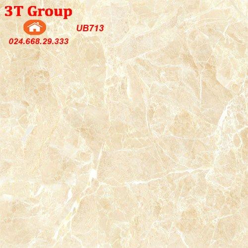 gạch lát 60x60 viglacera UB6602