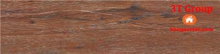 gạch giả gỗ 15x80 8808