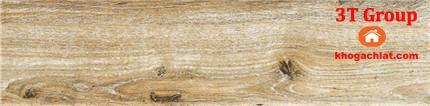 gạch giả gỗ 15x80 8810