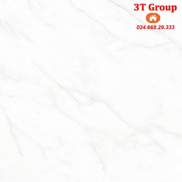 gạch 60x60 catalan 6943